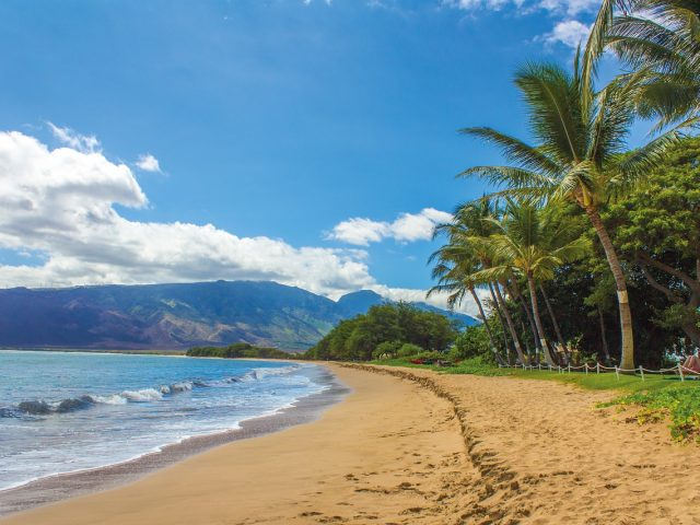 Make it Extra Special with Hawaii Weddings