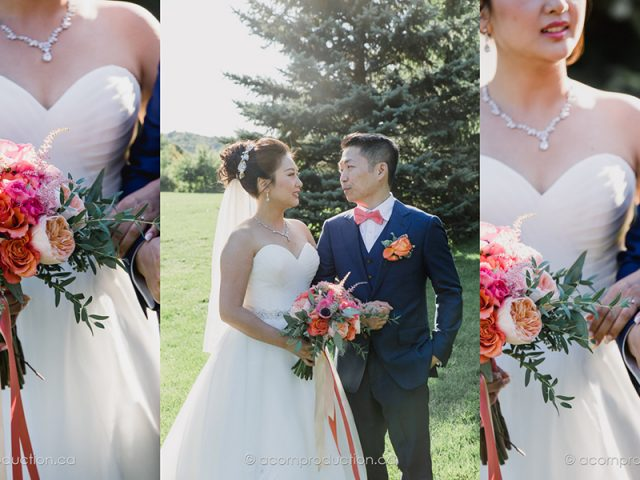 Locate an Affordable Toronto Wedding Photographer for Your Wedding